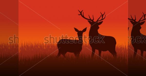 Deer and Doe Silhouette