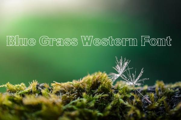 fancy blue grass western font
