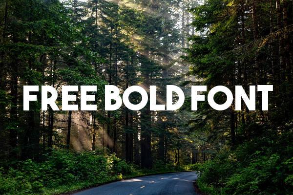 Free Bold Font