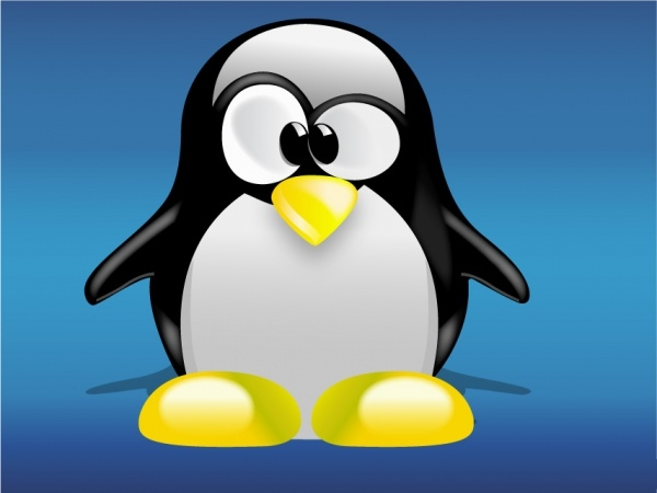free cartoon penguin stock photo