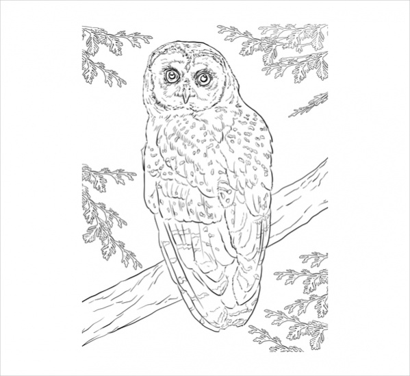 adult level coloring pages - photo#21