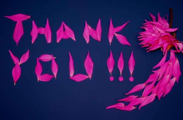 Free Thank You Image