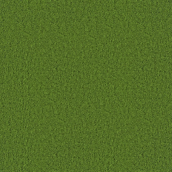 Grass Carpet Texture