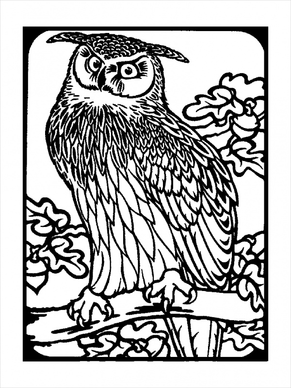 18 Owl Coloring Pages JPG AI Illustrator Download