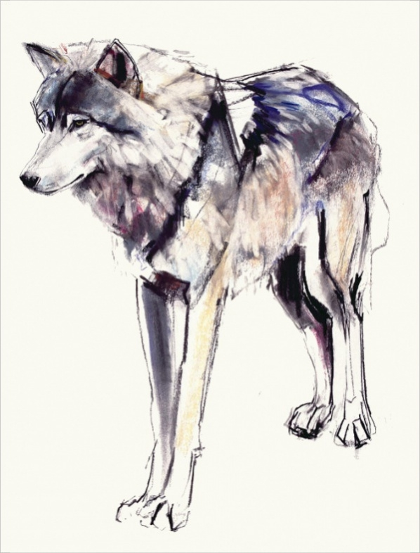 Hexagonal Shaped Wolf Drawing