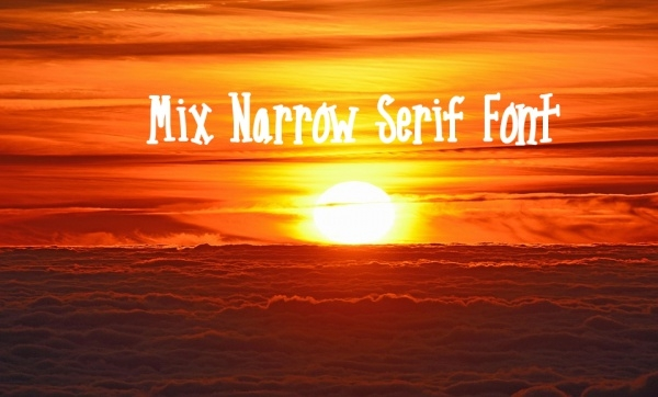 Mix Narrow Serif Font