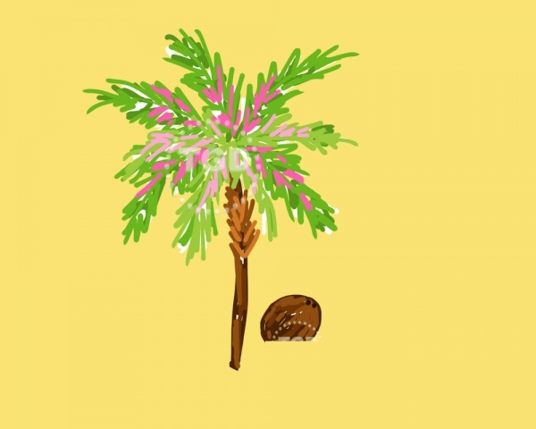 peppy palm tree clipart