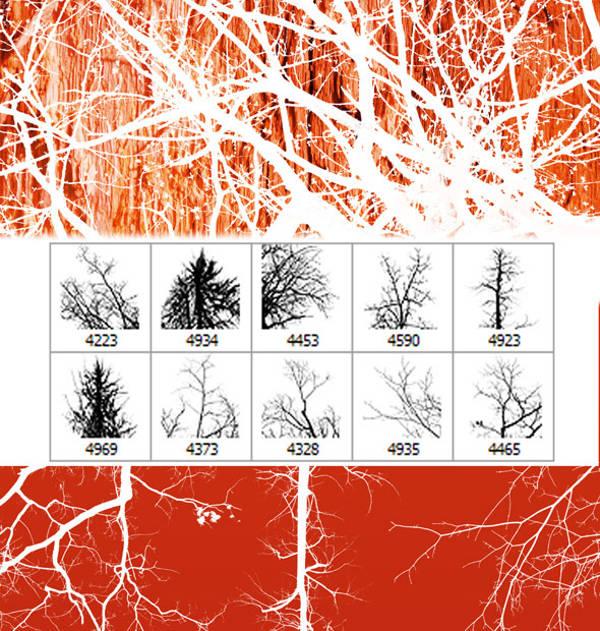 Photoshop Tree Brushes