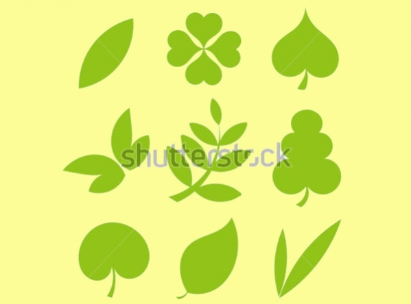 Set of Various Tree Leaves Shapes