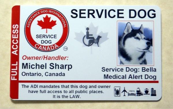 Simple Dog Id Card