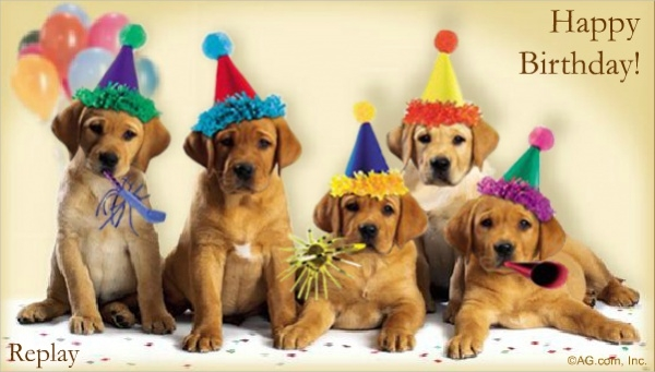 Singing Dogs Funny Birthday Card