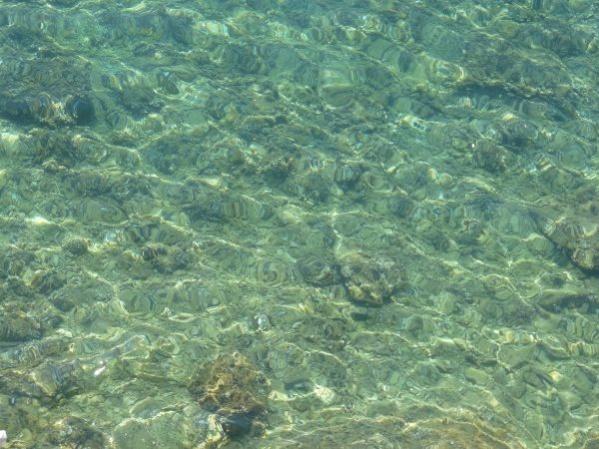 Transparent Water Texture