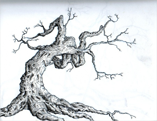 Tree Line Drawing