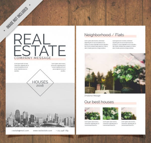 Vector Realestate Flyer
