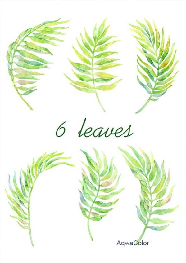 watercolor palm leaves clipart
