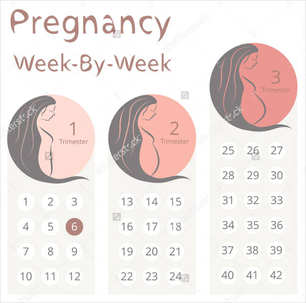 FREE 10+ Weekly Calendars in PSD | Vector EPS | AI
