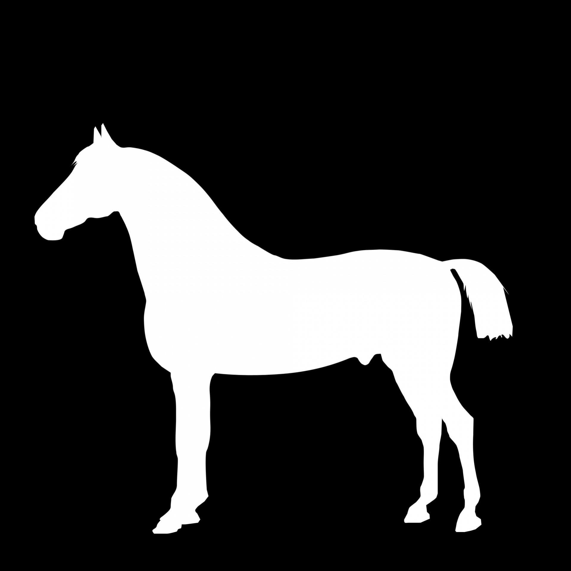 White Horse Silhouette