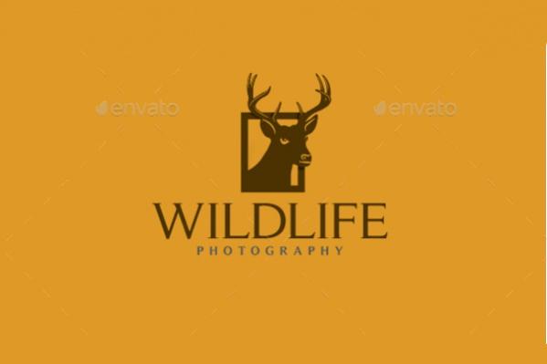 Wild Life Reindeer Photography Logo