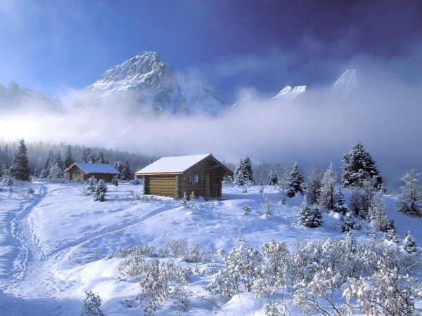 Winter Scenes Background