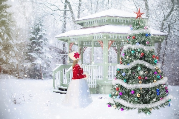 Wonderful Winter Christmas Background