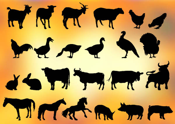 various collection of animal silhouettes