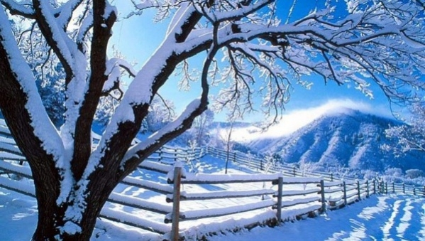 Image result for winter background
