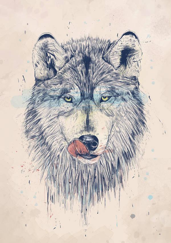abstract animal drawing