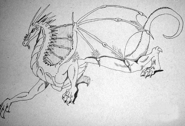 Amazing Dragon Drawing
