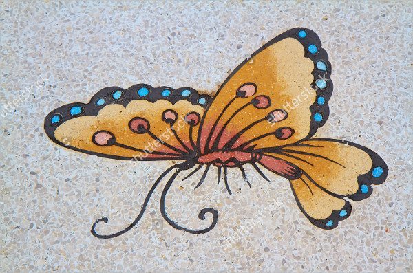 Ancient Butterfly Painting
