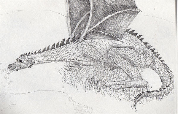 Awesome Dragon Drawing