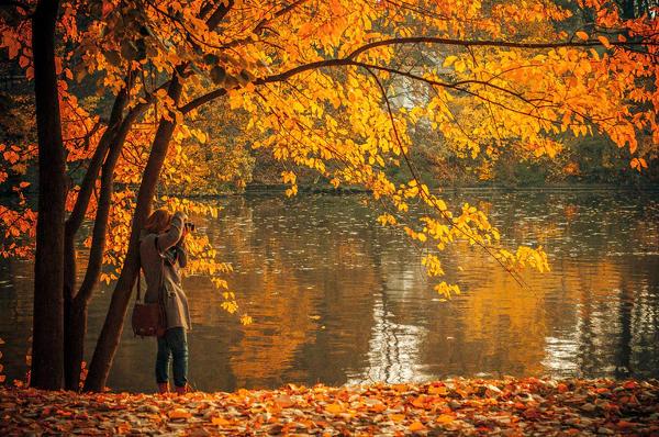 Beautiful Fall Photography