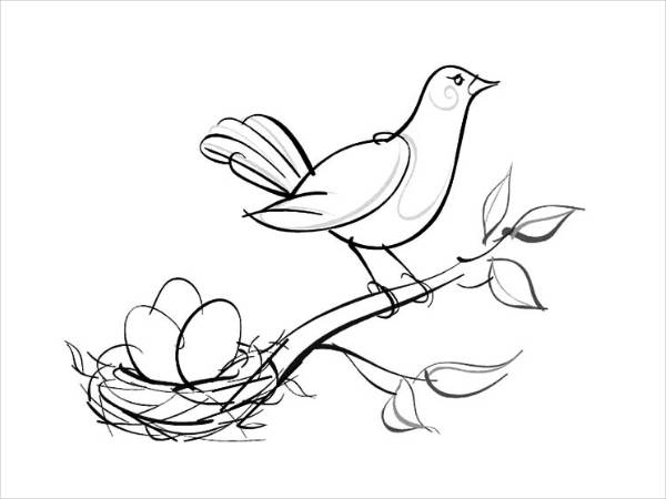 Bird Nest Coloring Page For Free