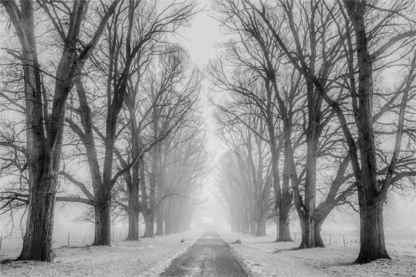 black and white landscape photography1