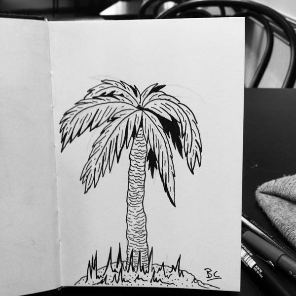 black and white palm tree drawing