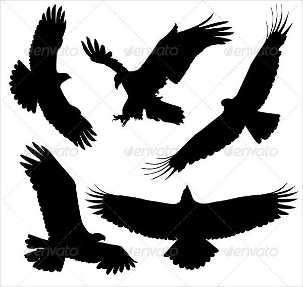 Black Eagle Silhouette