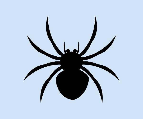Black Spider Clipart