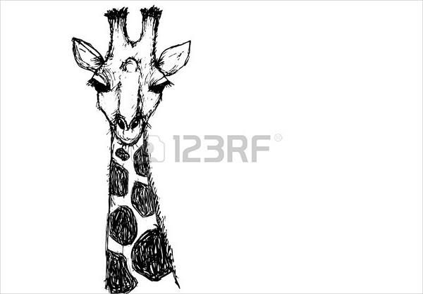 Black & White Giraffe Drawing