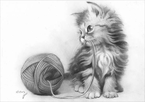 black and white animal drawing