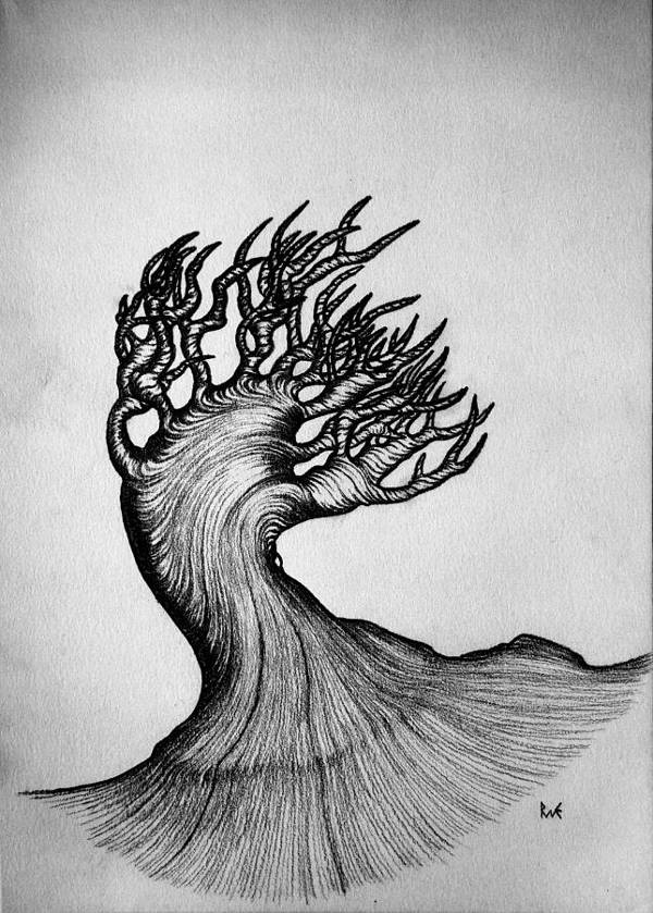 Black and White Drawing of Nature