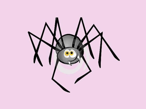 Cartoon Spider Clipart
