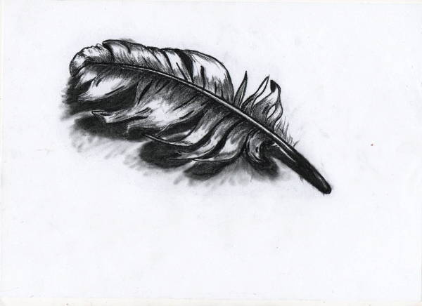 Charcoal Feather Drawing