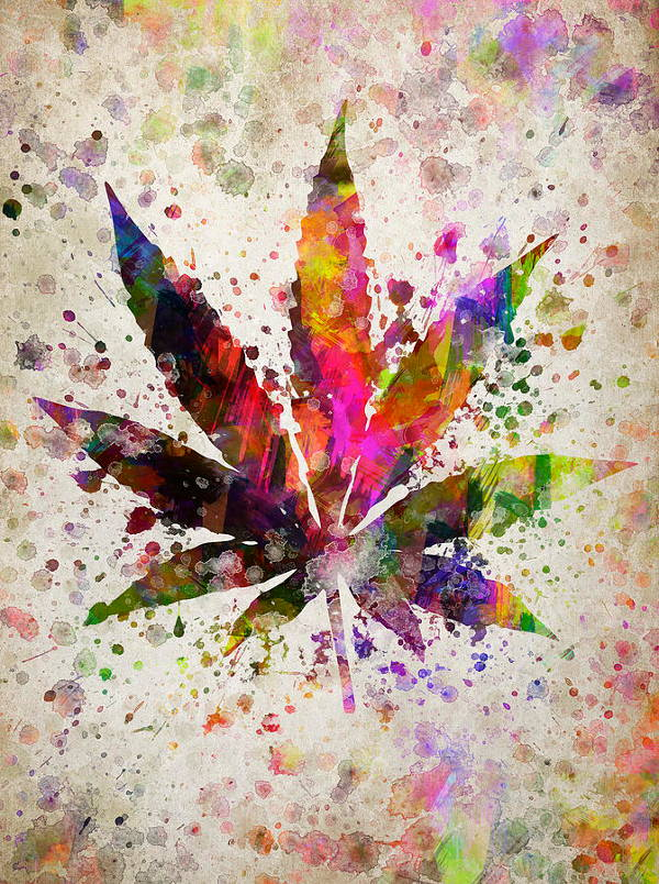 Colorful Leaf Drawing