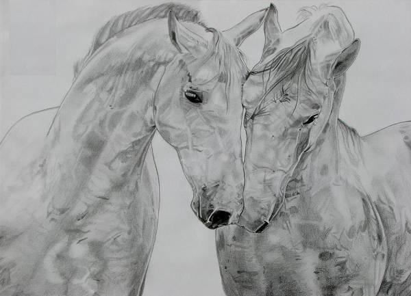 Cute Love Horse Drawing