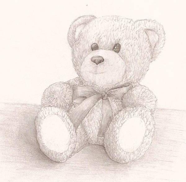 Cute Teddy Bear Drawing