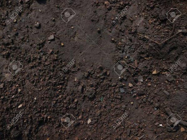 Dark Soil Texture