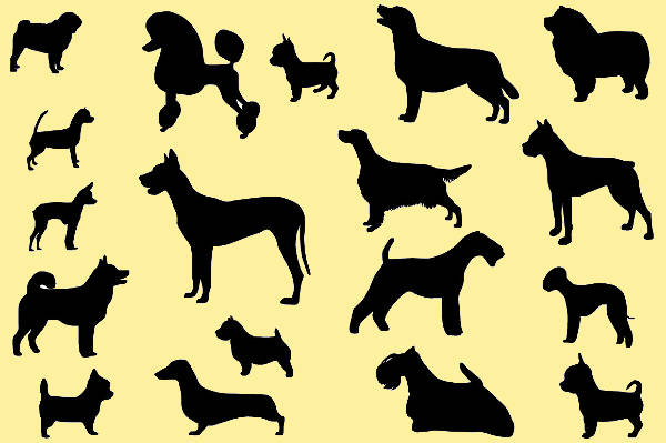 dog breed silhouettes1