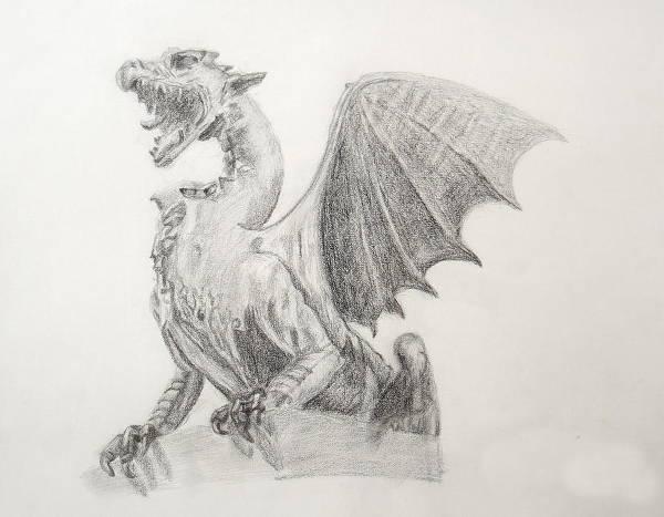 Dragon Wing Drawing