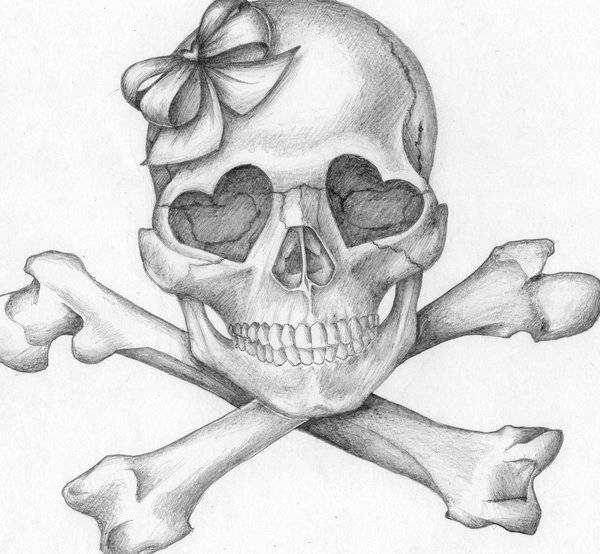 Drawing of Skull