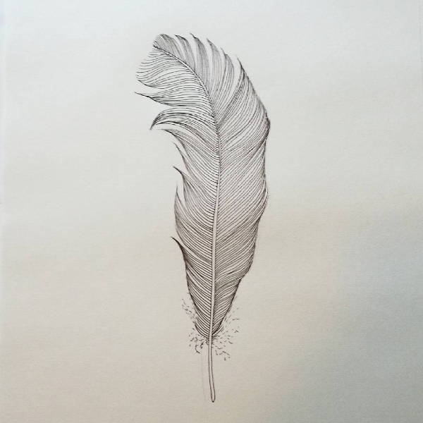 Easy Feather Drawing