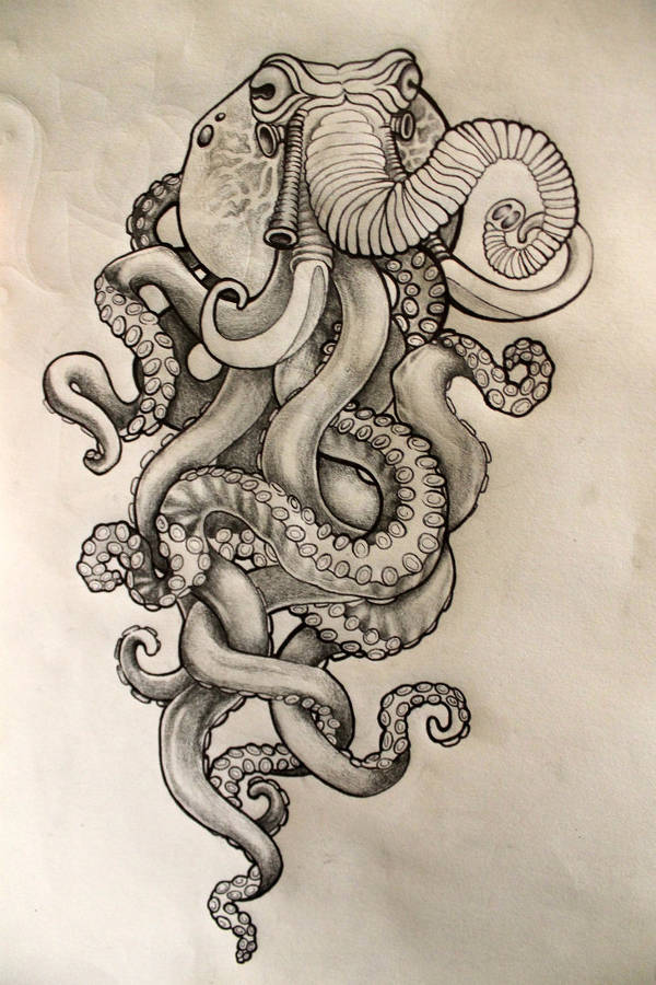 9 octopus drawings jpg download for Octopus drawing easy